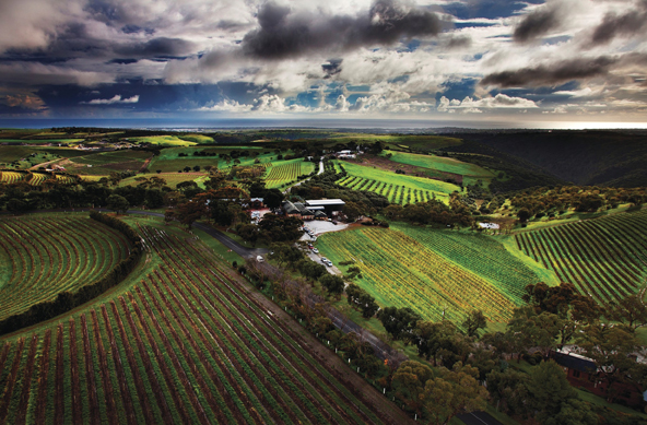 Mclaren Vale Hop On Hop Off Tour Trailhopper